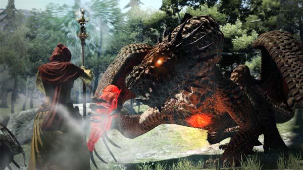 Dragon's Dogma Drake 03