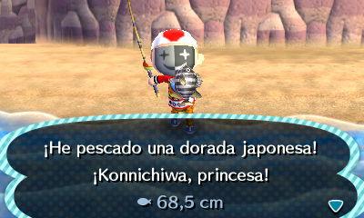 Animal Crossing Deculture 01