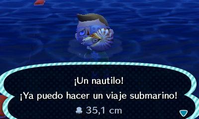 Animal Crossing Deculture 07