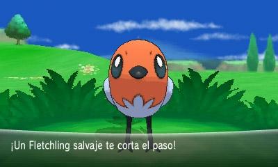 pokemon x y fletchling 04