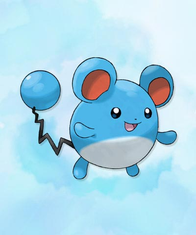 Marill pokemon x y