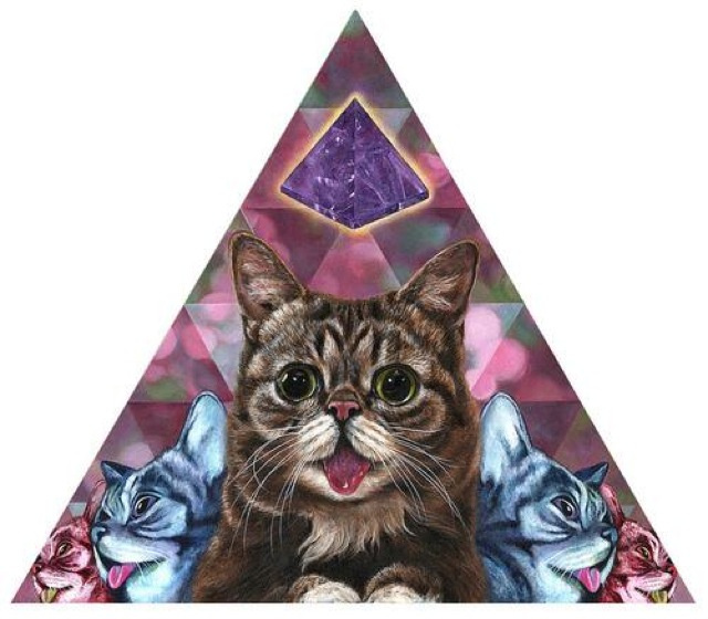Gatos Y Drogas, Un Cóctel Visual Alucinógeno Que Coge