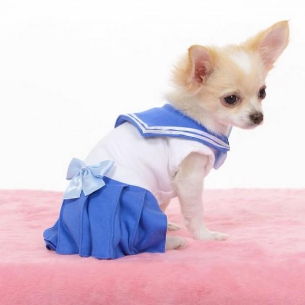 Sailor-moon-dog-cosplay-04