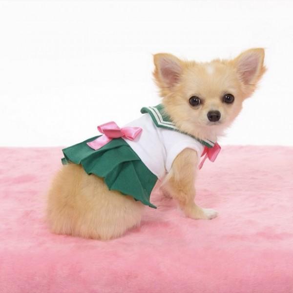 Sailor-moon-dog-cosplay-05