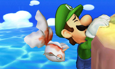Pokemon Smash Bros 3DS (14)