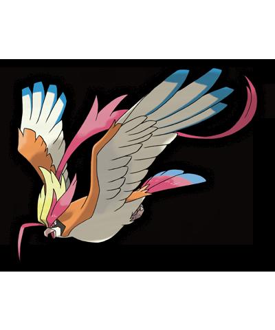 Mega Pidgeot Pokemon Rubi Omega Zafiro Alfa 00