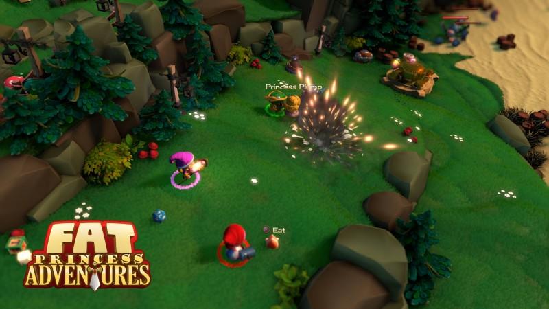 Fat Princess Adventures 03