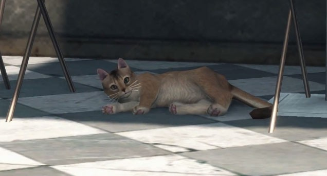 Xenoblade-Chronicles-X-gato