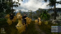 Final Fantasy XV chocobos